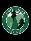 PSLogo_Color_Ireland