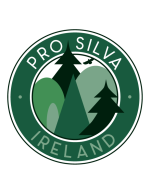 PSLogo_Color_Ireland