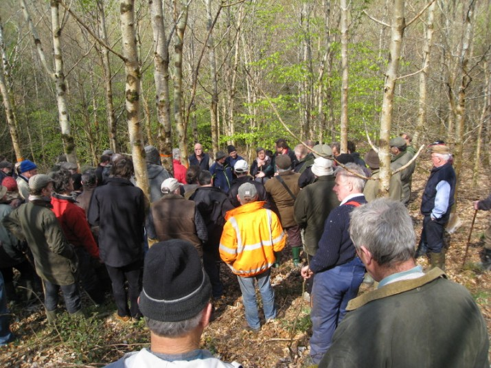 Some of the 70 attendees in a broad leaf stand at David and Mary Legges' Leitrim property.