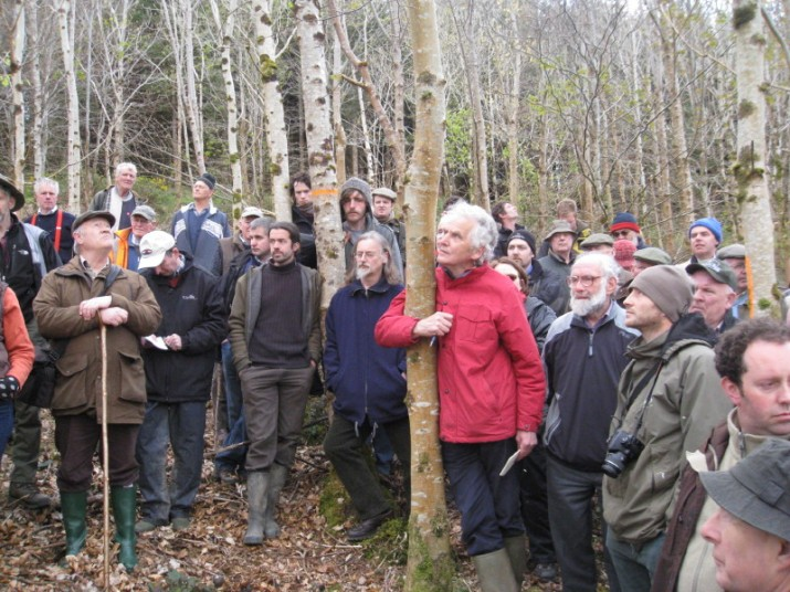Learning in the live wood: Prosilva's Open Forest Day passed on practical management techniques