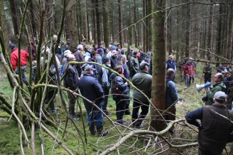 Pro Silva Ireland Sat April 27, 2013 Open Forest Day: AFI site at a Coillte property in Rahin, Co. Kildare