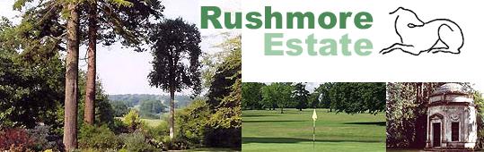 Rushmore logo