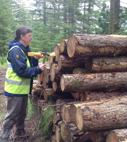 2) a tapping monitor for sawn logs
