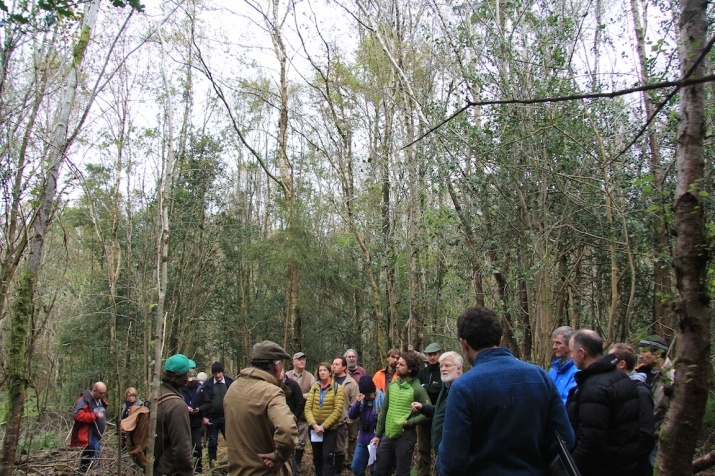 Raheen forest has diverse areas of different tree species but all can benefit from a Close-to-Nature continuous cover forestry management approach.
