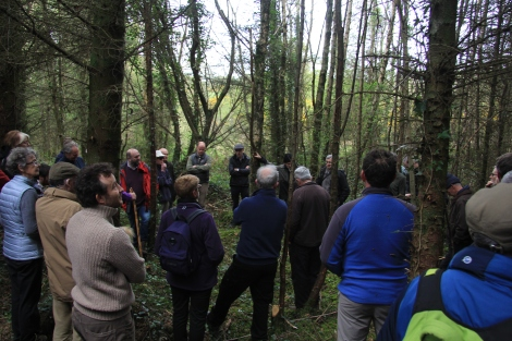 ProSilva Ireland in Co. Carlow and Minister to launch ProSilva Guidebook at Irish Forestry show, 5 May,Stradbally